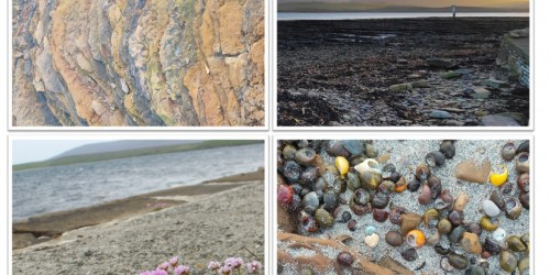 Four photographs in a collage - the first image depicts a close up of geology, the second show the hills of the island of Hoy as viewed from Stromness, the third photo shows flowers at the shore, and the final photograph shows a close up of shells on sand.